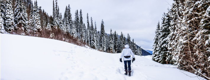 winter outdoor activities. Contemporary Winter Winter Outdoor Activities In British Columbia Inside S